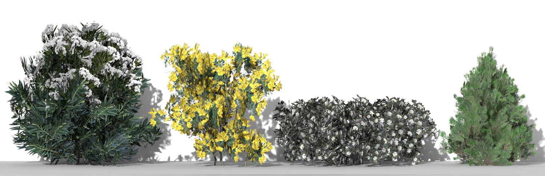 Piante 3D parametriche - Volume 09